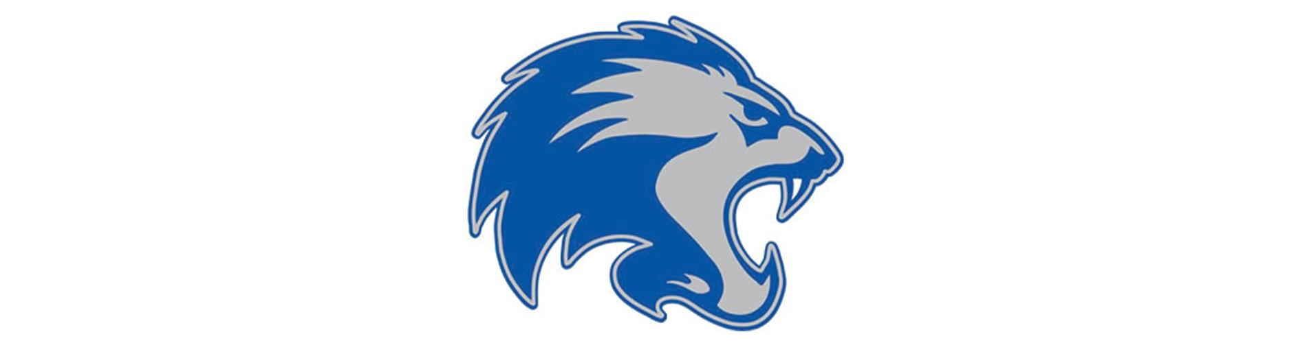 Lions Launch New Website